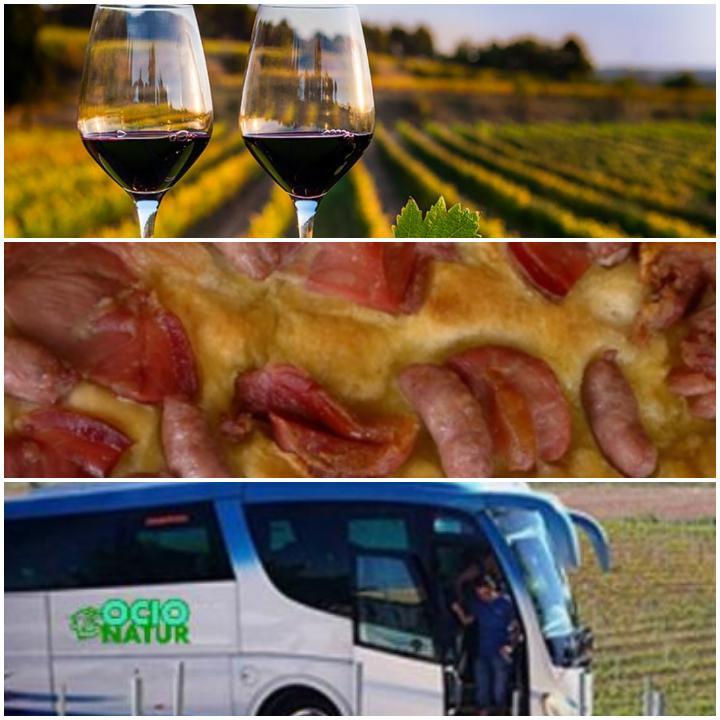 Excursión Enoturismo Experience. Para disfrutar del vino.
