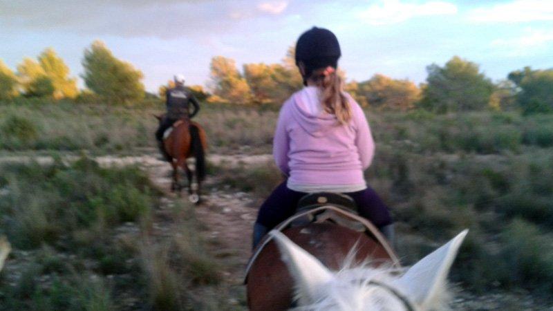Rutas guiadas a caballo