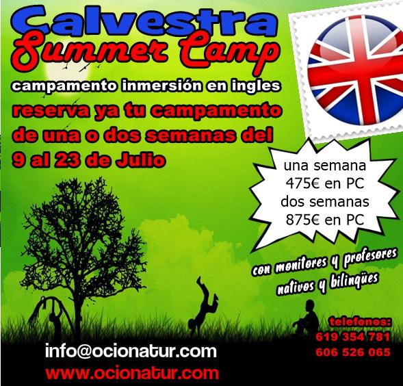 Campamentos en inglés en Valencia para niños