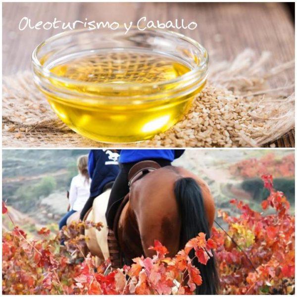 Oleoenoturismo y caballo. Una experiencia diferente