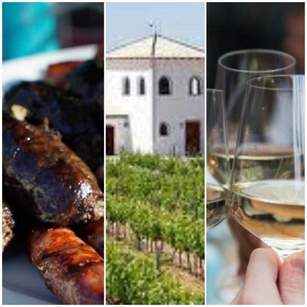 Tour para Cruceros por la Ruta del vino