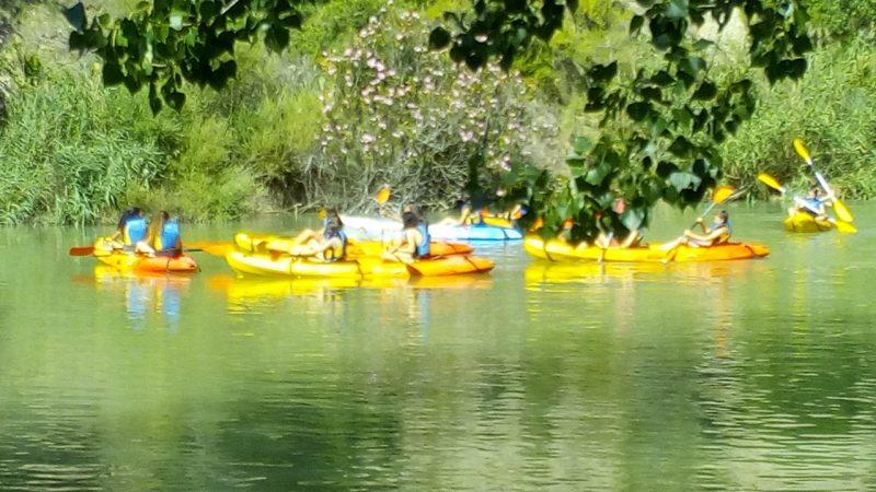 Descenso en canoa por aguas tranquilas río Cabriel