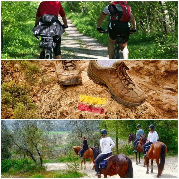 Fusión de Naturaleza. Bike, senderismo y ruta a caballo